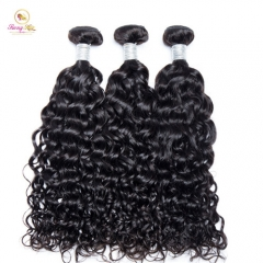 Sanny Water Wave Human Hair 3 Bundles Brazilian Remy Hair